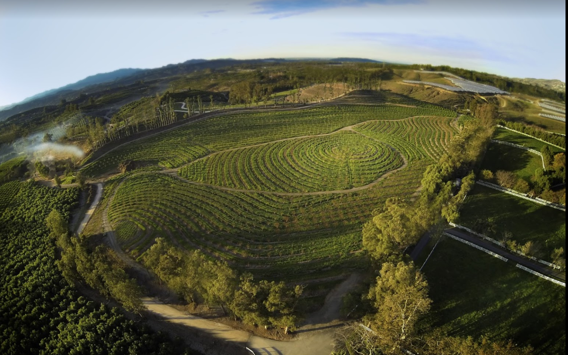 Google Image of Apricot Lane Farms